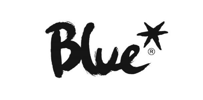 partner-blue